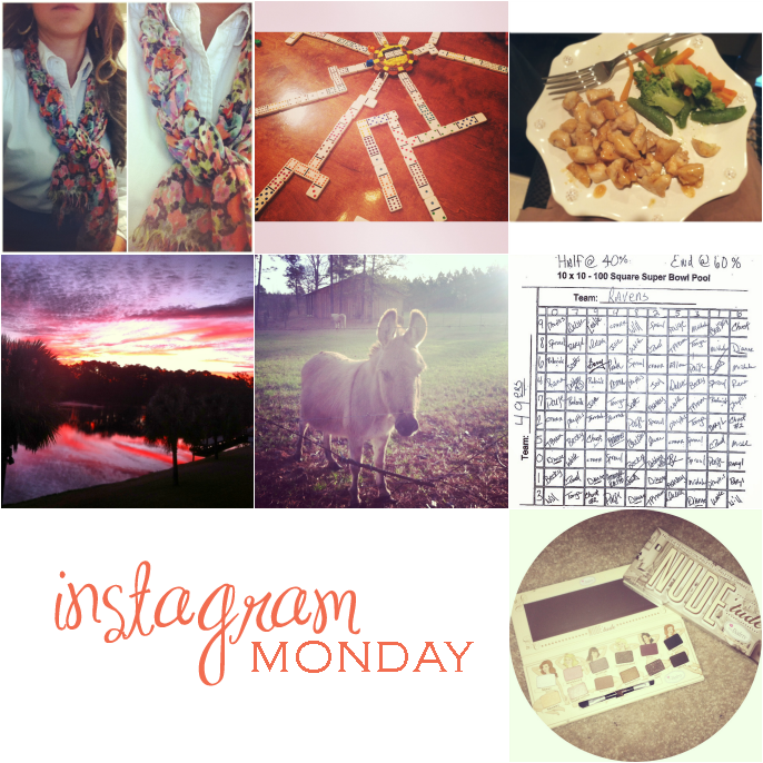 instagram-(020413)