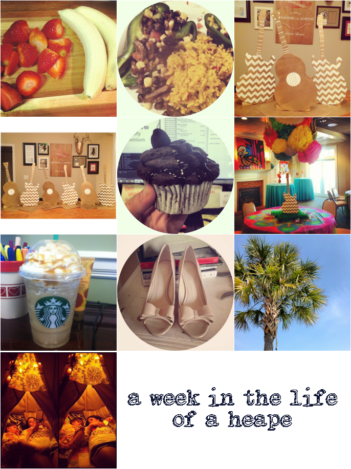 instagram-(031113)