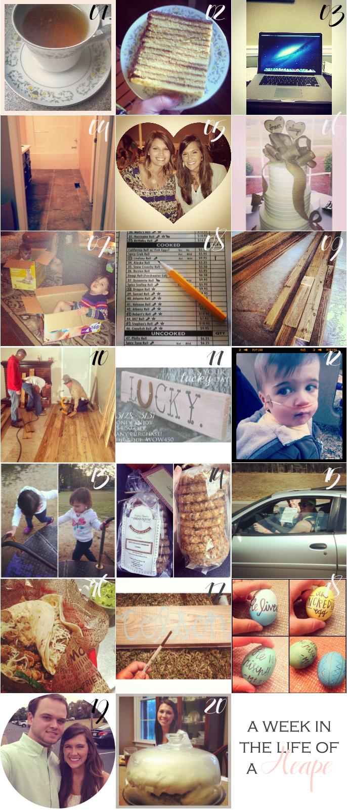 instagram-(040113)