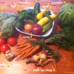 new smoothie recipe + farm to table, box 4
