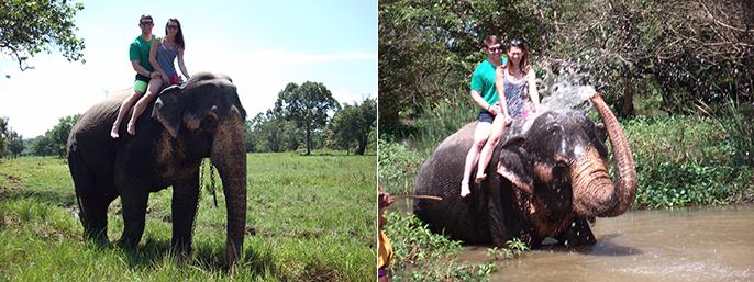 bethany-elephantride